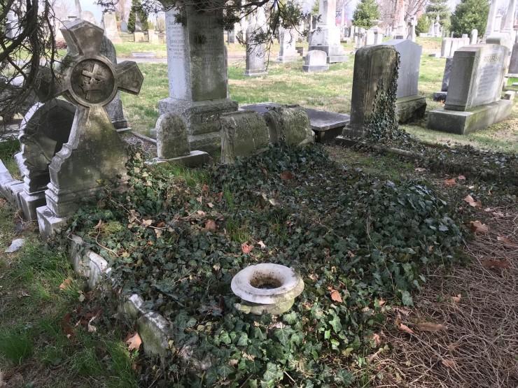 Cradle grave 1